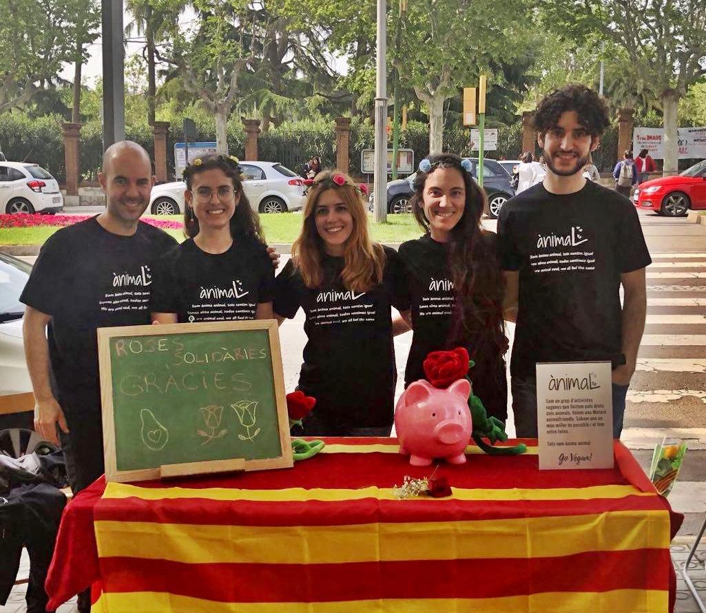 Sant Jordi solidario 2019